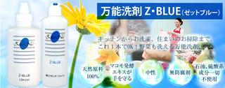 image_l6.jpg